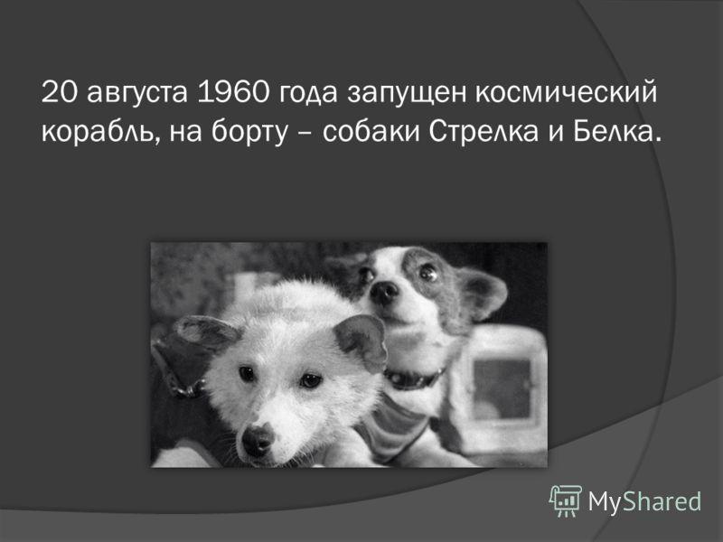 20 августа 1960 года запущен космический корабль, на борту – собаки Стрелка и Белка.
