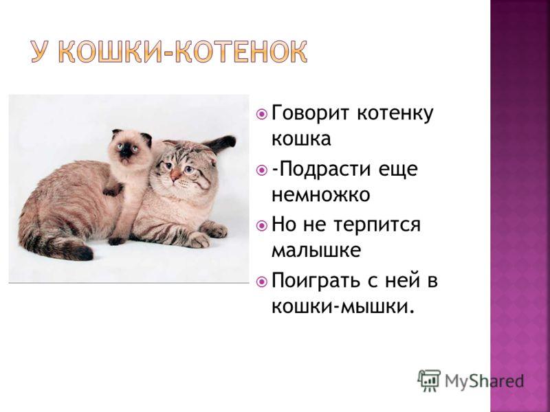 Говорит котенку кошка -Подрасти еще немножко Но не терпится малышке Поиграть с ней в кошки-мышки.
