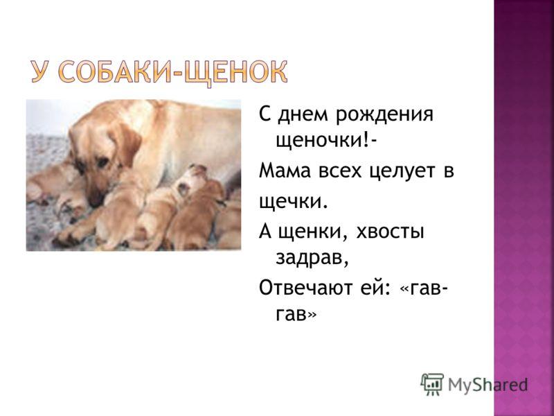 С днем рождения щеночки!- Мама всех целует в щечки. А щенки, хвосты задрав, Отвечают ей: «гав- гав»