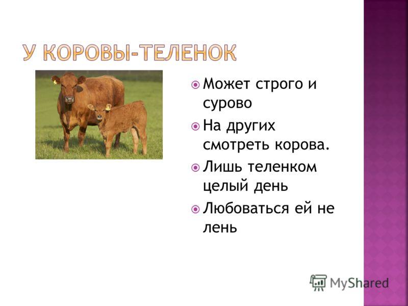 Может строго и сурово На других смотреть корова. Лишь теленком целый день Любоваться ей не лень
