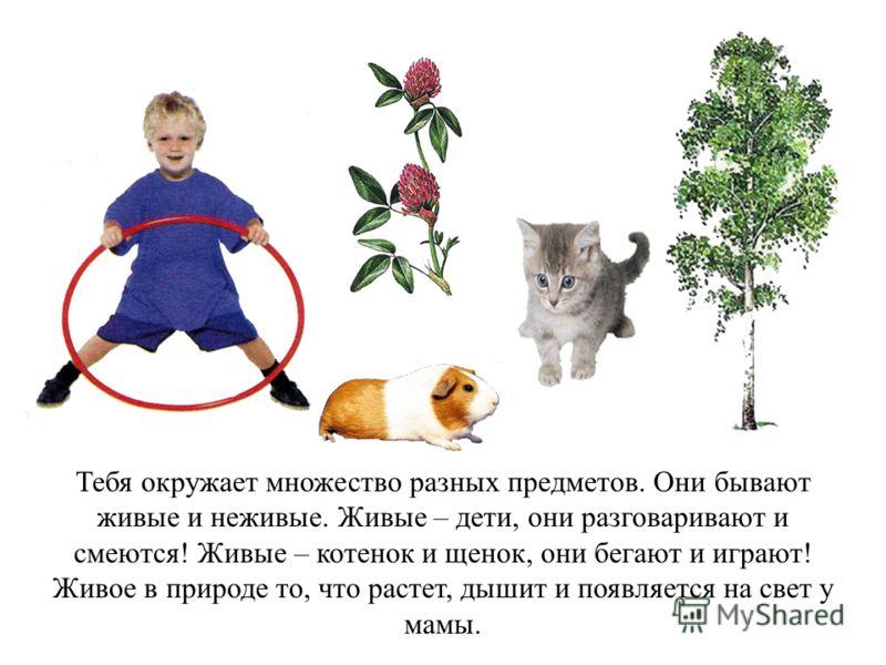Тебя окружает множество разных предметов. Они бывают живые и неживые. Живые – дети, они разговаривают и смеются! Живые – котенок и щенок, они бегают и играют! Живое в природе то, что растет, дышит и появляется на свет у мамы.