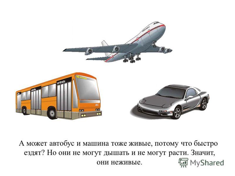 А может автобус и машина тоже живые, потому что быстро ездят? Но они не могут дышать и не могут расти. Значит, они неживые.