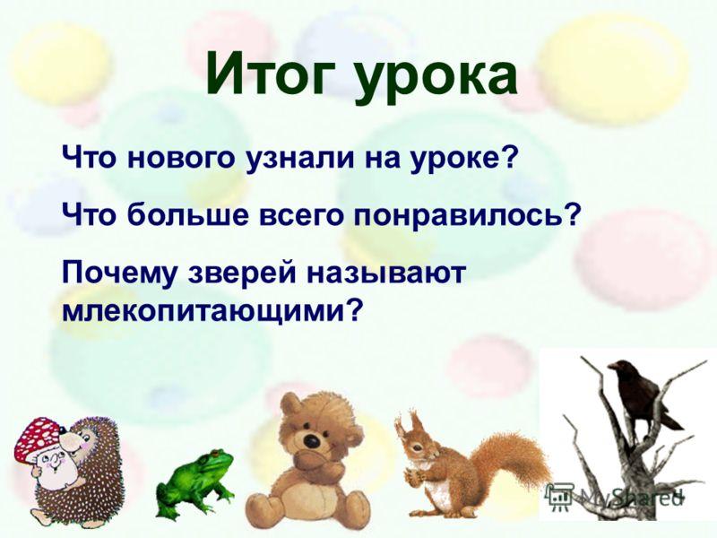 Итог урока Что нового узнали на уроке? Что больше всего понравилось? Почему зверей называют млекопитающими?