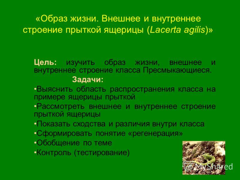 «Образ жизни. Внешнее и внутреннее строение прыткой ящерицы (Lacerta agilis)» Цель: изучить образ жизни, внешнее и внутреннее строение класса Пресмыкающиеся. Задачи: Выяснить область распространения класса на примере ящерицы прыткой Рассмотреть внешн