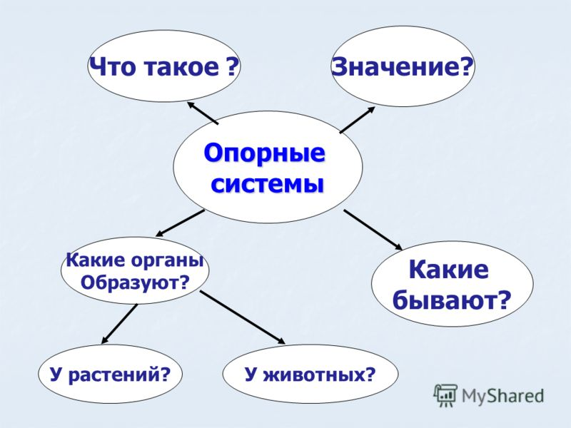 Опорныесистемы Что такое ? Значение? Какие бывают? Какие органы Образуют? У растений?У животных?