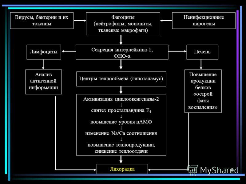8 Вирусы, бактерии и их токсины Неинфекционные пирогены Фагоциты (нейтрофилы, моноциты, тканевые макрофаги) Секреция интерлейкина-1, ФНО-α Лимфоциты Анализ антигенной информации Центры теплообмена (гипоталамус) Активизация циклооксигеназы-2 синтез пр