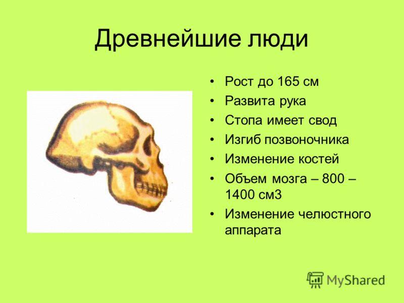 Древнейшие люди Рост до 165 см Развита рука Стопа имеет свод Изгиб позвоночника Изменение костей Объем мозга – 800 – 1400 см3 Изменение челюстного аппарата