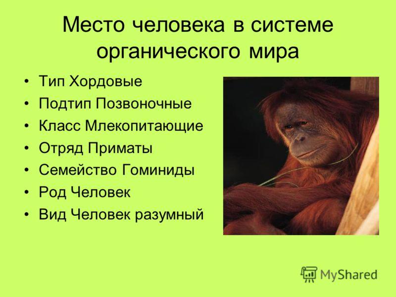 Место человека в системе органического мира Тип Хордовые Подтип Позвоночные Класс Млекопитающие Отряд Приматы Семейство Гоминиды Род Человек Вид Человек разумный