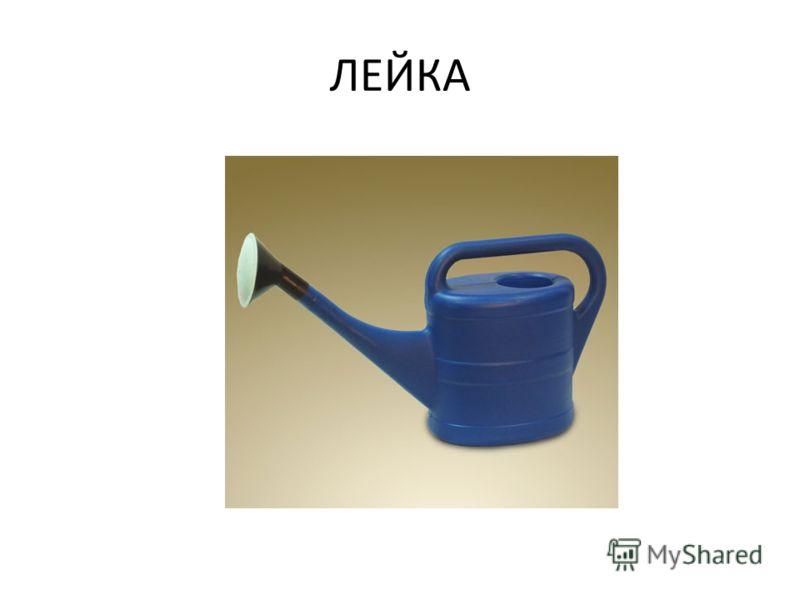 ЛЕЙКА