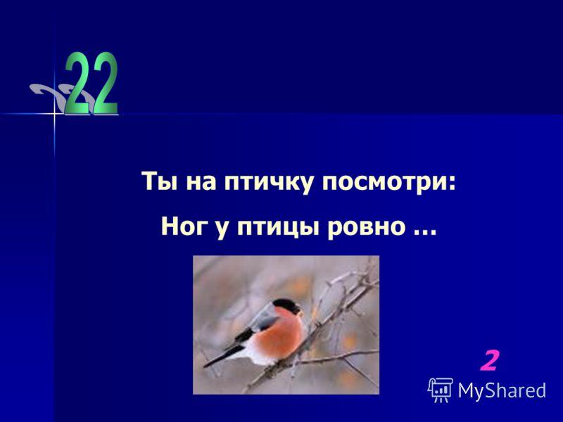 Ты на птичку посмотри: Ног у птицы ровно … 2