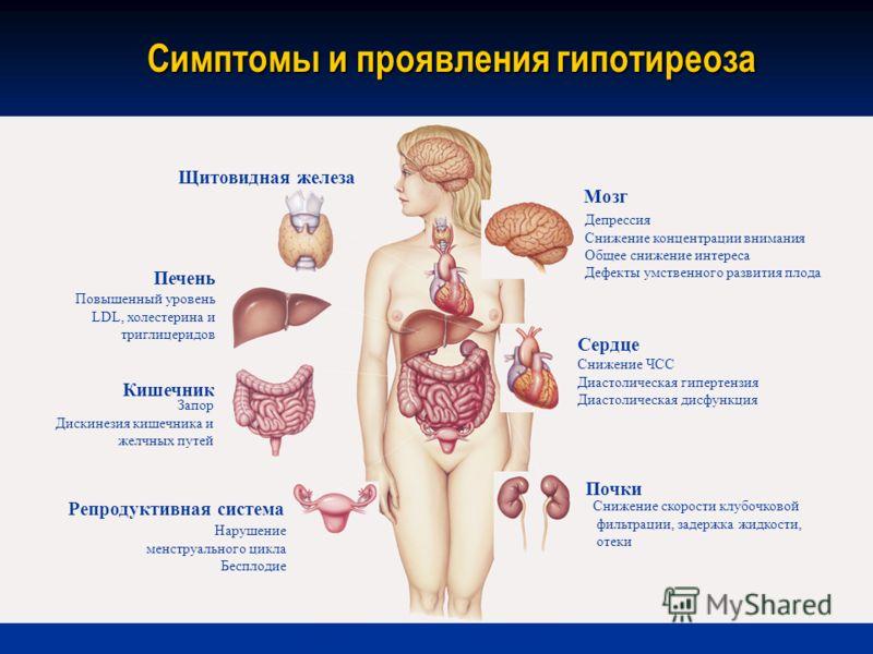 Щитовидная железа Повышенный уровень LDL, холестерина и триглицеридов Печень Запор Дискинезия кишечника и желчных путей Кишечник Нарушение менструального цикла Бесплодие Репродуктивная система Депрессия Снижение концентрации внимания Общее снижение и