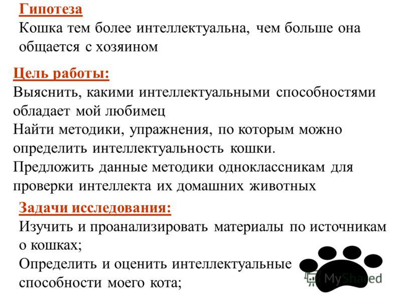 Гипотеза Кошка тем более интеллектуальна, чем больше она общается с хозяином Цель работы: Выяснить, какими интеллектуальными способностями обладает мой любимец Найти методики, упражнения, по которым можно определить интеллектуальность кошки. Предложи