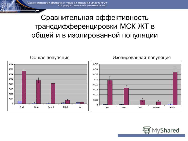Сравнительная эффективность трансдифференцировки МСК ЖТ в общей и в изолированной популяции Общая популяцияИзолированная популяция