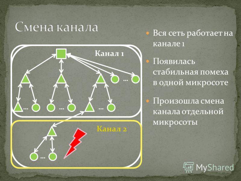 Вся сеть работает на канале 1 ……… … … Канал 1 Канал 2 Появилась стабильная помеха в одной микросоте Произошла смена канала отдельной микросоты