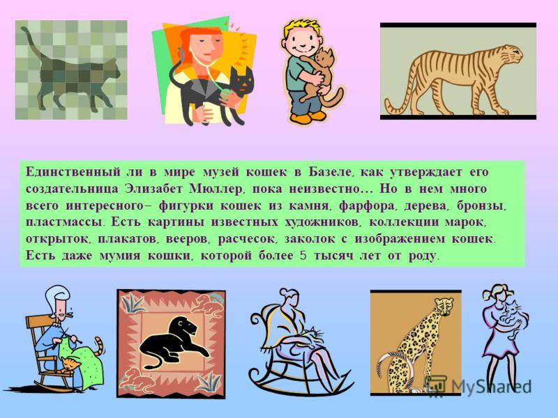 Современный домашний кот, скорее всего, прямой потомок африканского дикого предка. Европейский дикий сородич также оказал немалое влияние на наших мурок. Ни один вид кошек, кроме домащней, не имеет такой пятнистой или пестрой окраски. Возможно, однак
