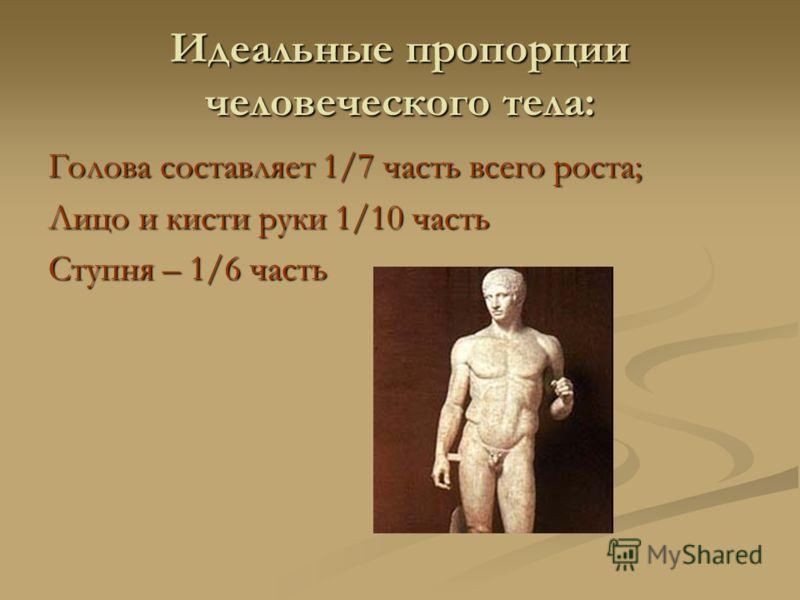 Идеальные пропорции человеческого тела: Голова составляет 1/7 часть всего роста; Лицо и кисти руки 1/10 часть Ступня – 1/6 часть