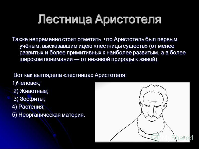 Лестница Аристотеля Также непременно стоит отметить, что Аристотель был первым учёным, высказавшим идею «лестницы существ» (от менее развитых и более примитивных к наиболее развитым, а в более широком понимании от неживой природы к живой). Вот как вы