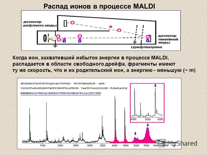 Когда ион, захвативший избыток энергии в процессе MALDI, распадается в области свободного дрейфа, фрагменты имеют ту же скорость, что и их родительский ион, а энергию - меньшую (~ m) Распад ионов в процессе MALDI