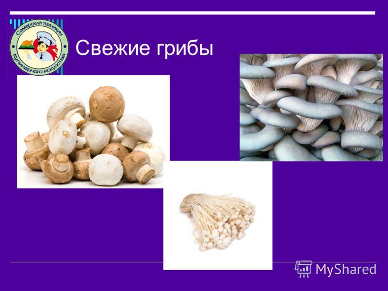 Свежие грибы