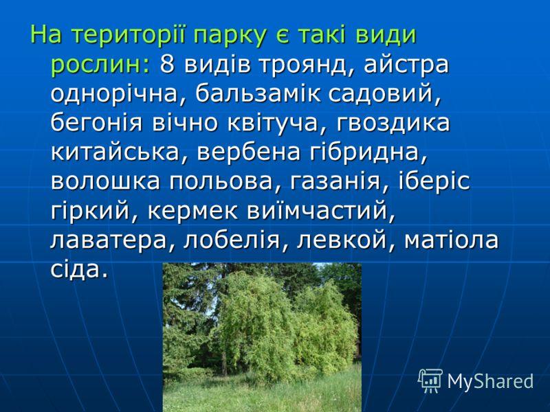 Щорічно по різних напрямках проводять конкурси серед учнів шкіл. Переможців запрошують на відпочинок та навчання в цей центр. Їх забезпечують проживанням, харчуванням, проводять екскурсії по столиці України.