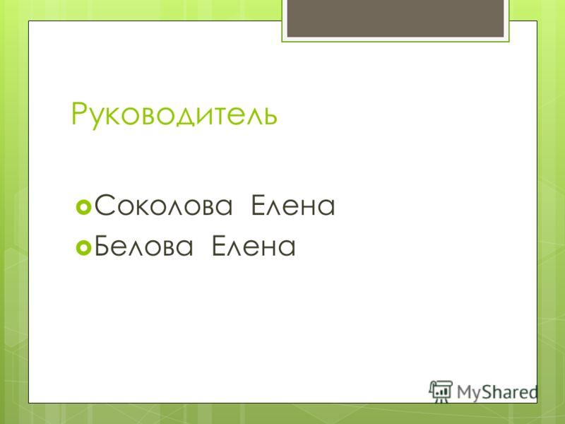 Руководитель Соколова Елена Белова Елена