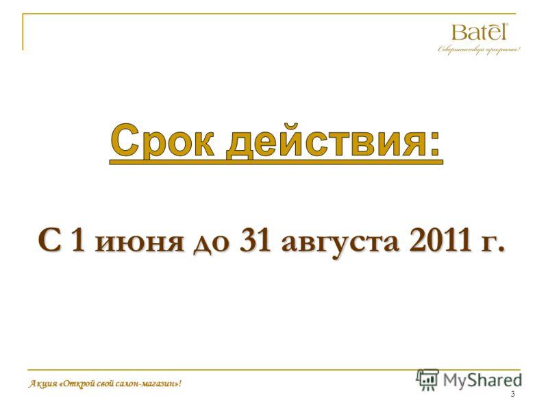 3 С 1 июня до 31 августа 2011 г. Акция «Открой свой салон-магазин»!