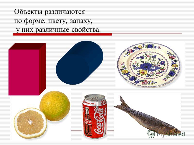 Объекты различаются по форме, цвету, запаху, у них различные свойства.