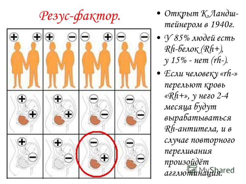 Группы крови. Открыты в 1900г. К.Ландштейнером, в 1930г. – Нобелевская премия. Группы крови по системе АВО Белки эритроцитов (агглютиногены) Белки плазмы (агглютинины) О (1) – 46%-а, в А (2) – 42%Ав В (3) – 9%Ва АВ (4) – 3%А, В-
