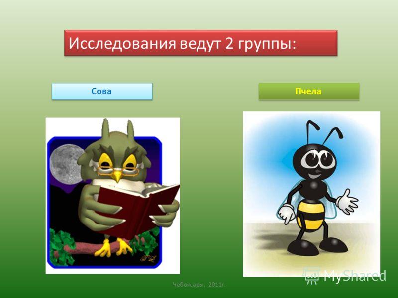 Исследования ведут 2 группы: Сова Пчела Чебоксары, 2011г.