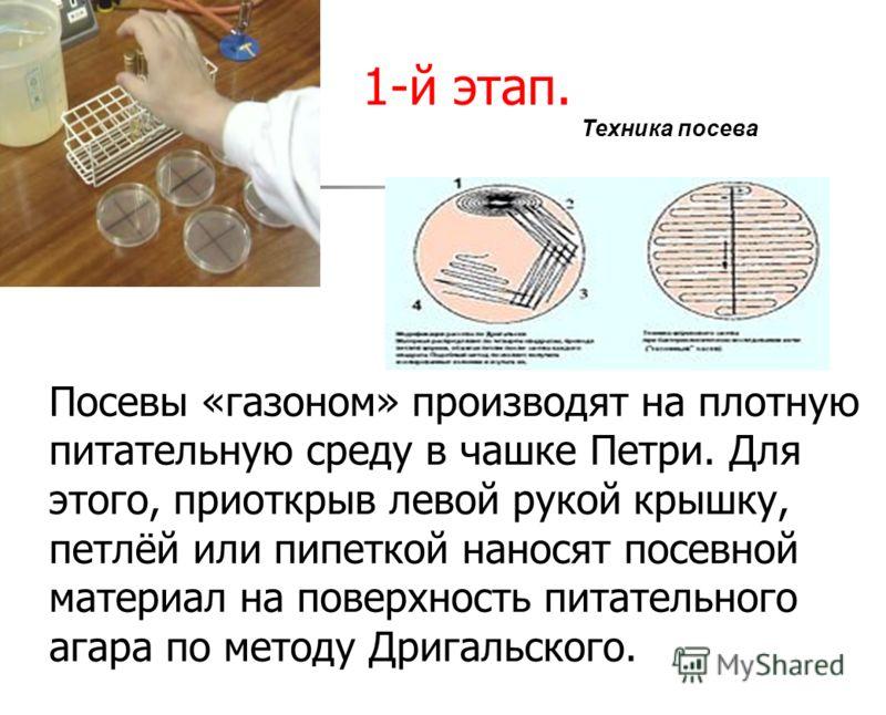 1-й этап. Посевы «газоном» производят на плотную питательную среду в чашке Петри. Для этого, приоткрыв левой рукой крышку, петлёй или пипеткой наносят посевной материал на поверхность питательного агара по методу Дригальского. Техника посева