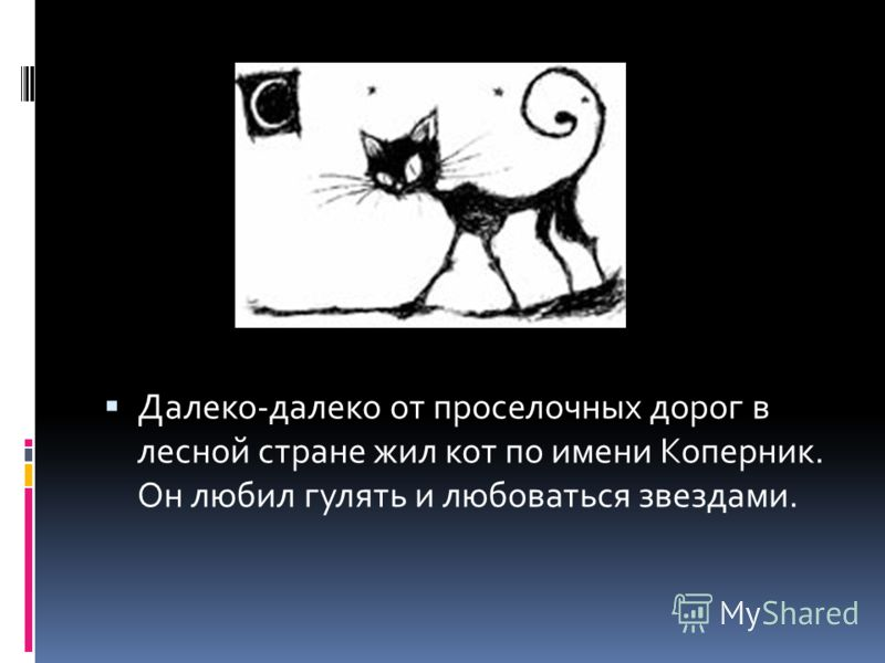 Далеко-далеко от проселочных дорог в лесной стране жил кот по имени Коперник. Он любил гулять и любоваться звездами.