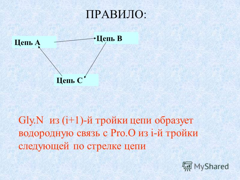 ПРАВИЛО: Цепь A Цепь C Цепь B Gly.N из (i+1)-й тройки цепи образует водородную связь с Pro.O из i-й тройки следующей по стрелке цепи