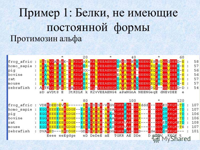 Пример 1: Белки, не имеющие постоянной формы Протимозин альфа