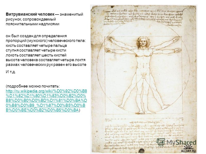 Витрувианский человек знаменитый рисунок, сопровождаемый пояснительными надписями он был создан для определения пропорций (мужского) человеческого тела: кисть составляет четыре пальца ступня составляет четыре кисти локоть составляет шесть кистей высо