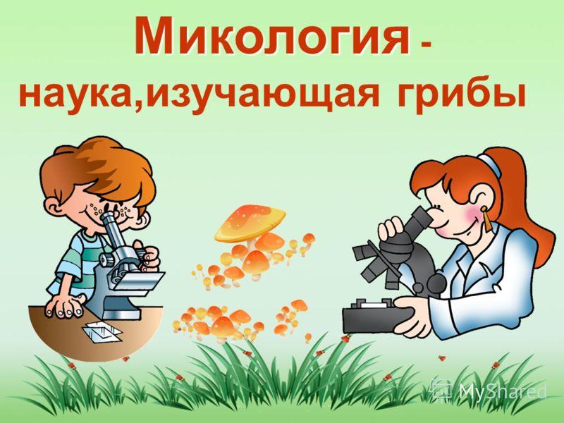 Микология Микология - наука,изучающая грибы