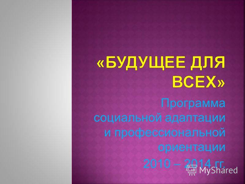 Программа социальной адаптации и профессиональной ориентации 2010 – 2014 гг.