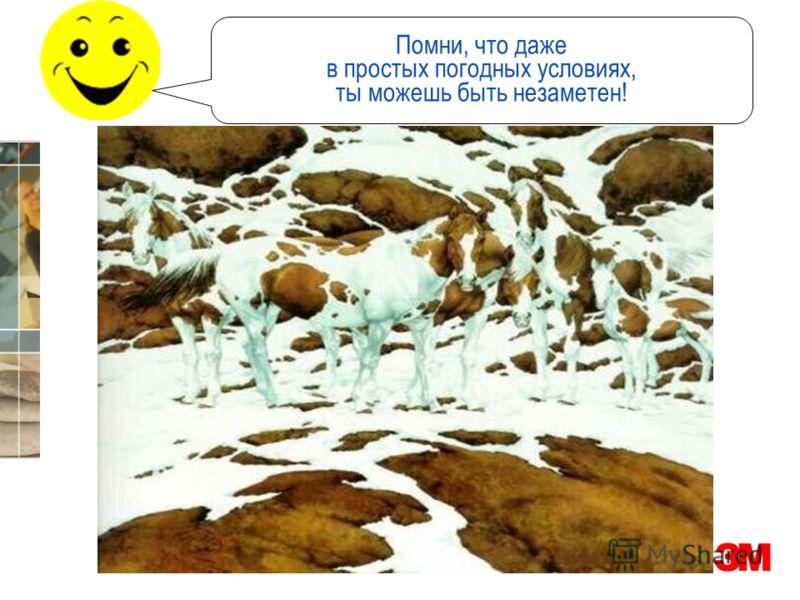 3M Россия Помни, что даже в простых погодных условиях, ты можешь быть незаметен!