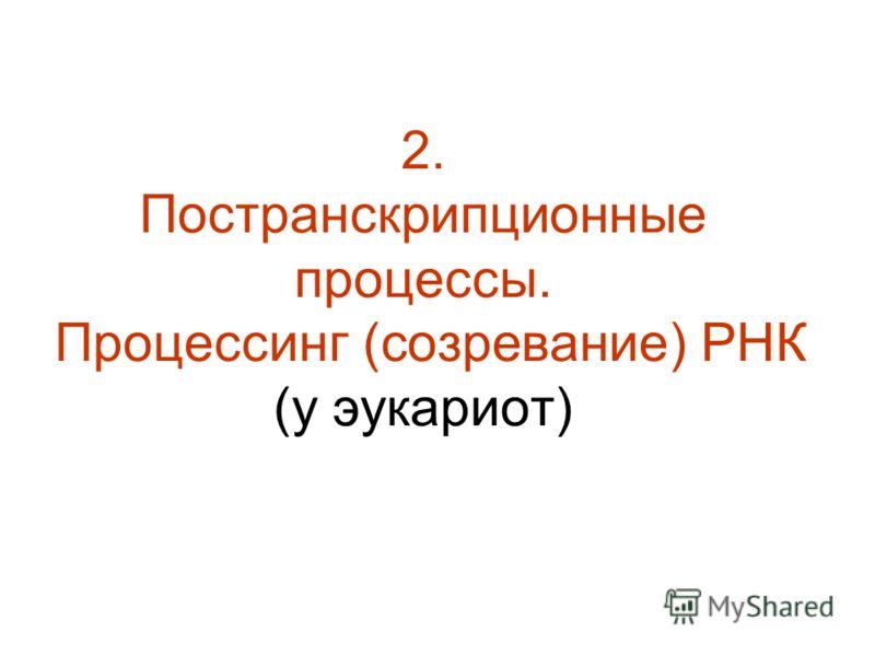 2. Постранскрипционные процессы. Процессинг (созревание) РНК (у эукариот)