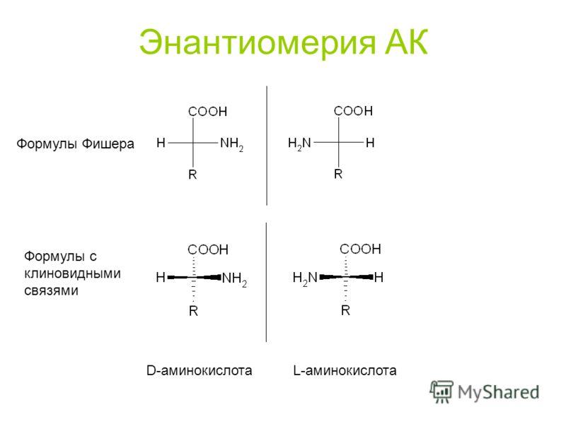 Энантиомерия АК D-аминокислота L-аминокислота Формулы Фишера Формулы с клиновидными связями