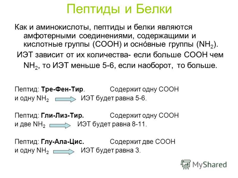 Пептиды и Белки Как и аминокислоты, пептиды и белки являются амфотерными соединениями, содержащими и кислотные группы (COOH) и оснóвные группы (NH 2 ). ИЭТ зависит от их количества- если больше COOH чем NH 2, то ИЭТ меньше 5-6, если наоборот, то боль