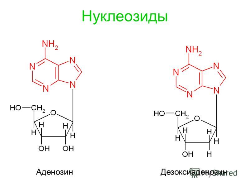 Нуклеозиды Аденозин Дезоксиаденозин