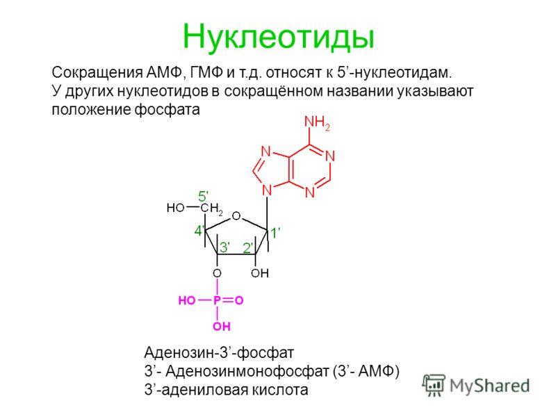 Нуклеотиды Сокращения АМФ, ГМФ и т.д. относят к 5-нуклеотидам. У других нуклеотидов в сокращённом названии указывают положение фосфата Аденозин-3-фосфат 3- Аденозинмонофосфат (3- АМФ) 3-адениловая кислота