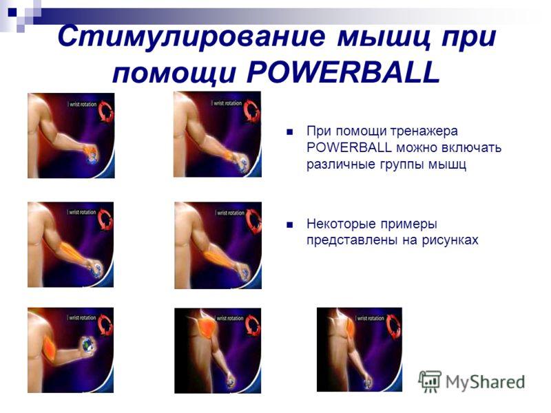 Стимулирование мышц при помощи POWERBALL При помощи тренажера POWERBALL можно включать различные группы мышц Некоторые примеры представлены на рисунках