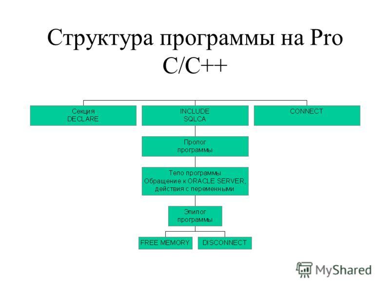Структура программы на Pro C/C++