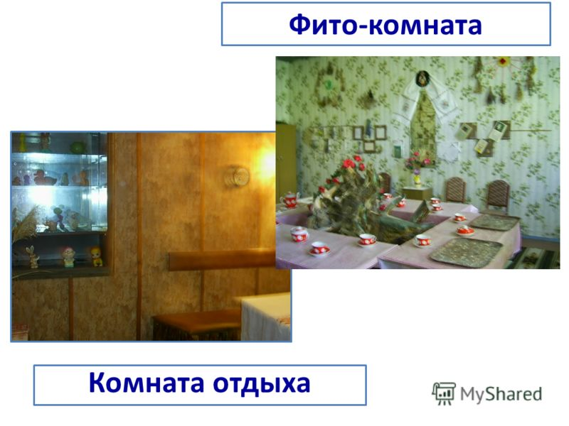 Фито-комната Комната отдыха
