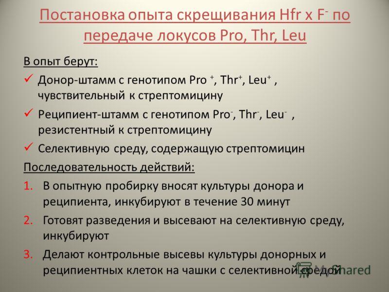 Постановка опыта скрещивания Hfr x F - по передаче локусов Pro, Thr, Leu В опыт берут: Донор-штамм с генотипом Pro +, Thr +, Leu +, чувствительный к стрептомицину Реципиент-штамм с генотипом Pro -, Thr -, Leu -, резистентный к стрептомицину Селективн