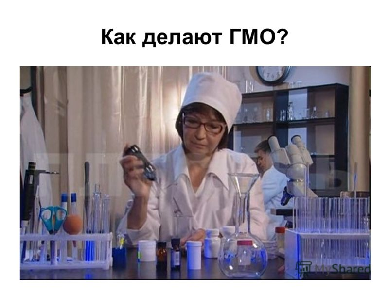 Как делают ГМО?