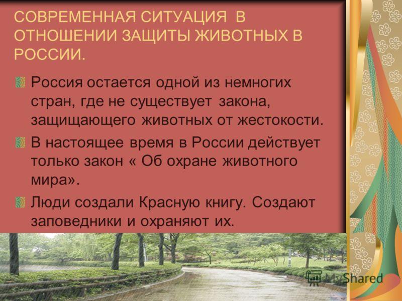 СОВРЕМЕННАЯ СИТУАЦИЯ В ОТНОШЕНИИ ЗАЩИТЫ ЖИВОТНЫХ В РОССИИ. Россия остается одной из немногих стран, где не существует закона, защищающего животных от жестокости. В настоящее время в России действует только закон « Об охране животного мира». Люди созд