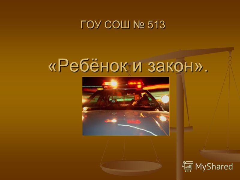 ГОУ СОШ 513 «Ребёнок и закон».