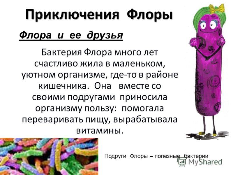 Флора Кишечника фото